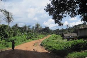 Liberian Road